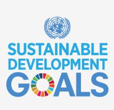 Lokale uitdagingen bij SDG 12