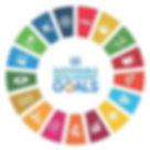 SDG Goals.jpg