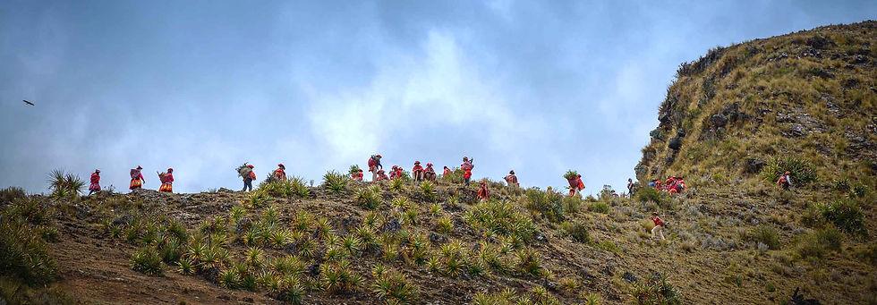 Andean Ridgeworkers