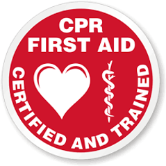 CPR-First Aid- Supervised Visitation Monitor Services Los Angeles CA