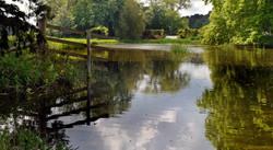 Reflections, Scampston Lake