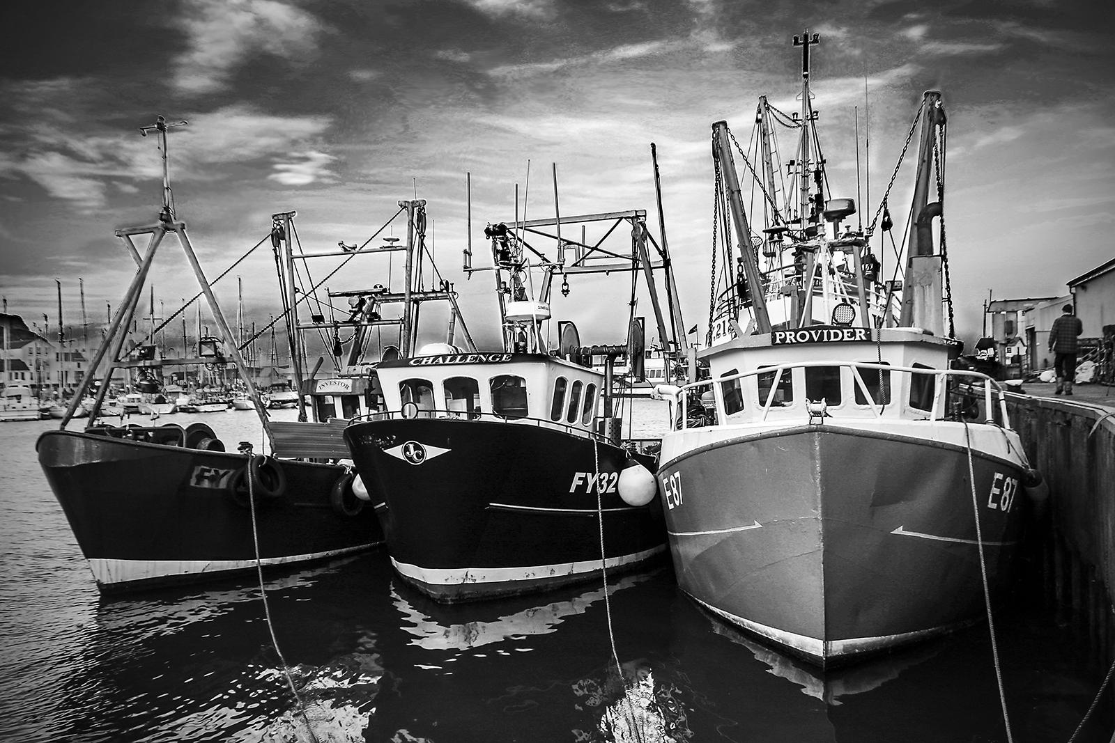 Moody Harbour