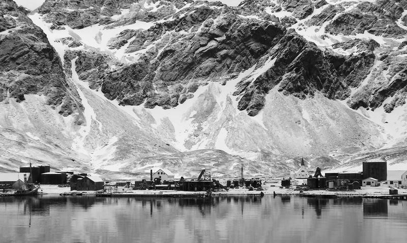 Grytviken 1st - Digitals