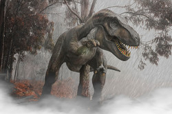 The Rex