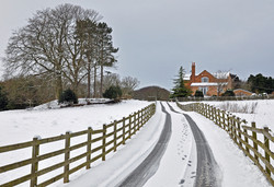 The Road to the Stables