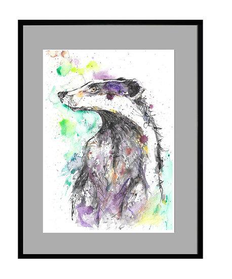 Badger Giclee Print - UNFRAMED
