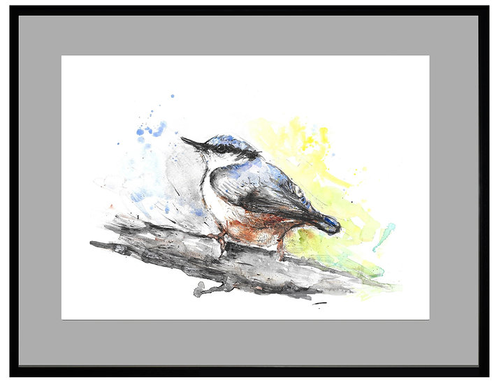 Nuthatch Giclee Print - UNFRAMED