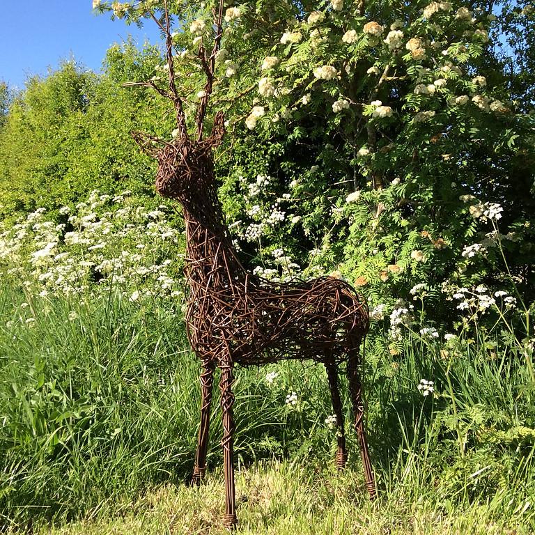 Willow weaving  :  Willow Deer