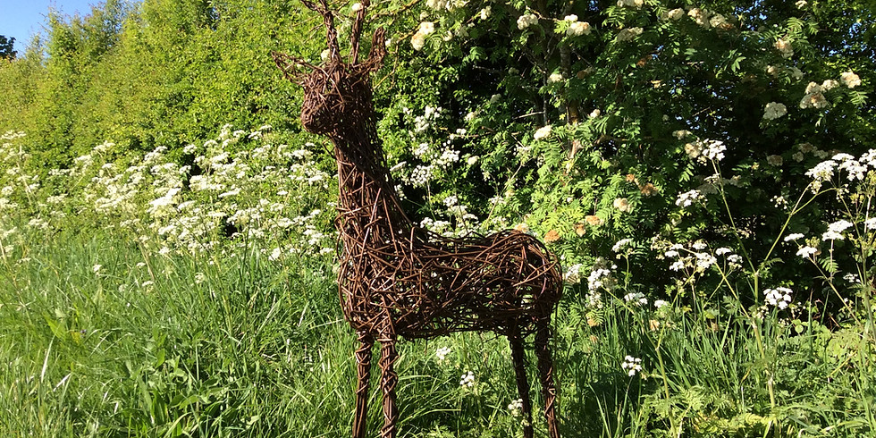Willow weaving  :  Willow Deer (1)