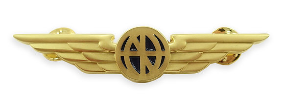 Pilot Wings - Aviator Wings Lapel Pin