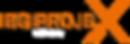 IBG ProjeX logo