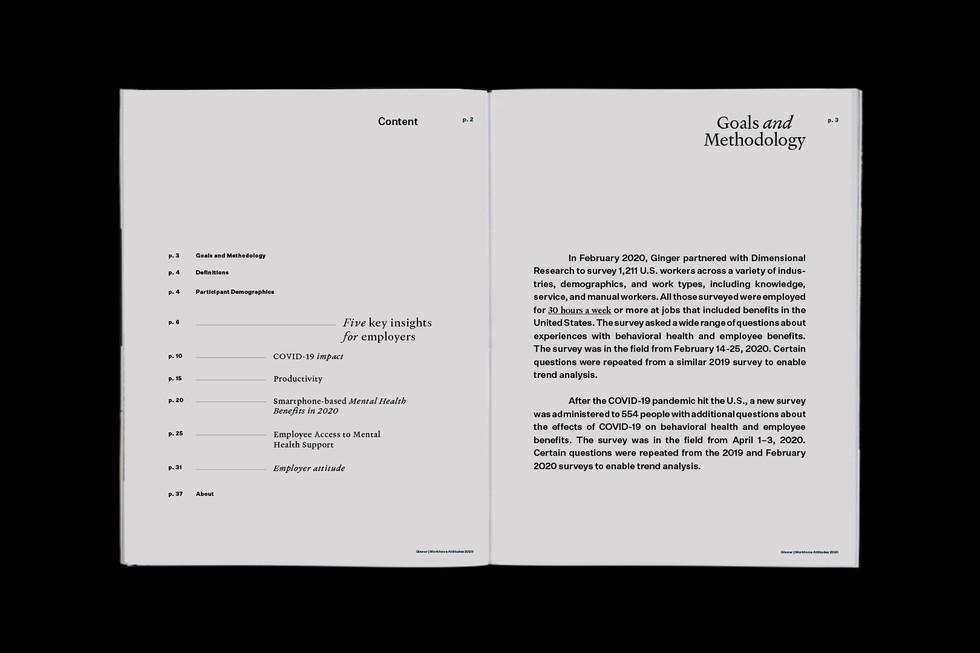 Studio Werken_Ginger-Report_01.jpg