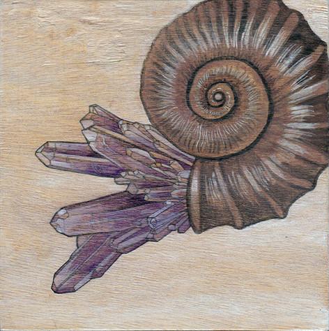 Nautilus & Amethyst | Sold