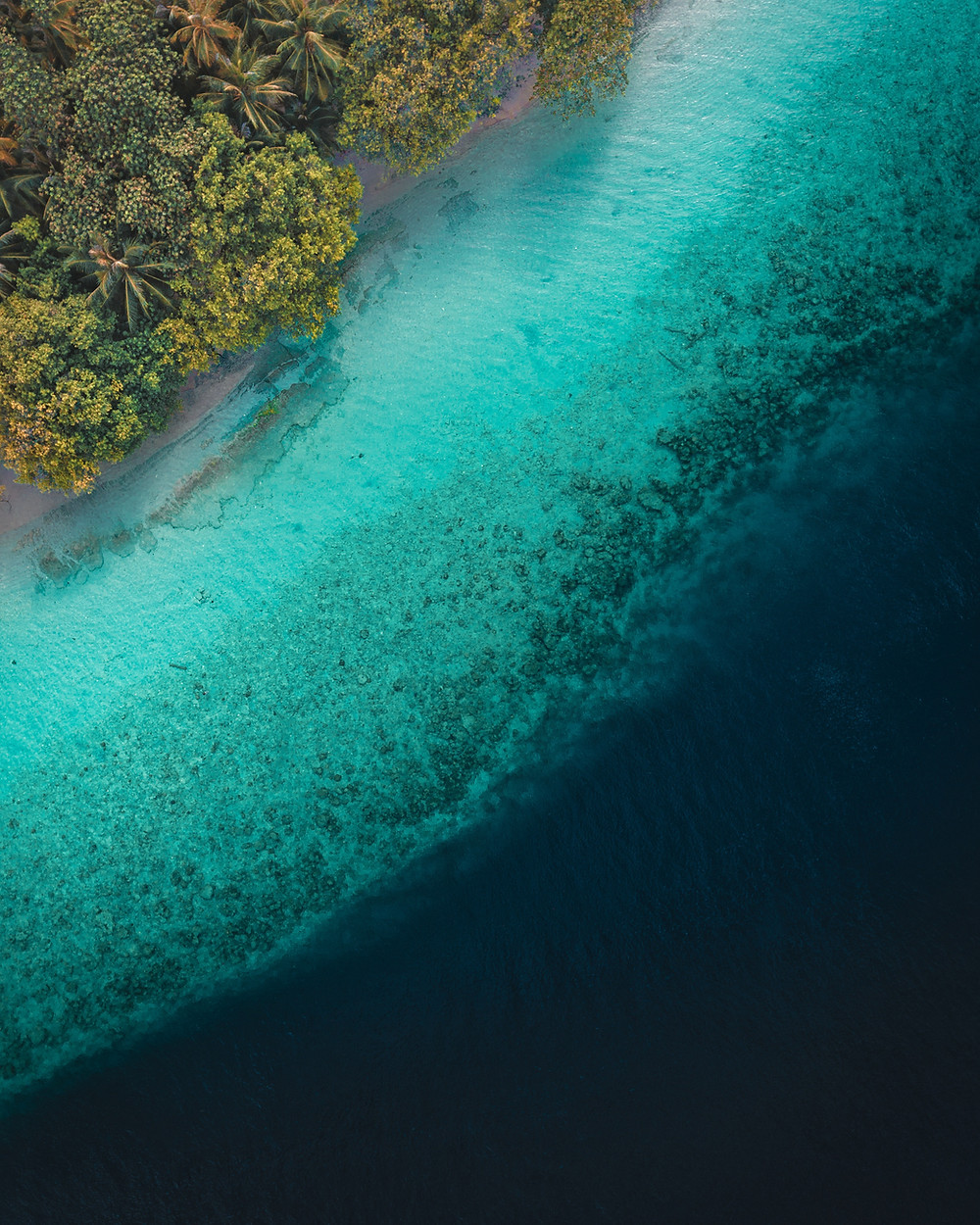 Dunk Island Australia: Shuttered Resort, Dunk Island, Sold