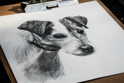 Dogdrawing-
