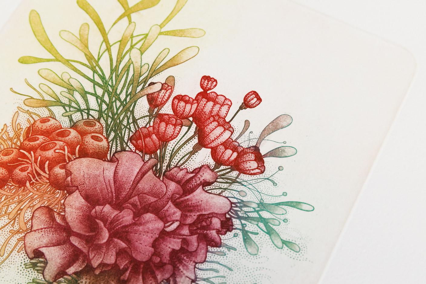 Lauren Kussro Prints
