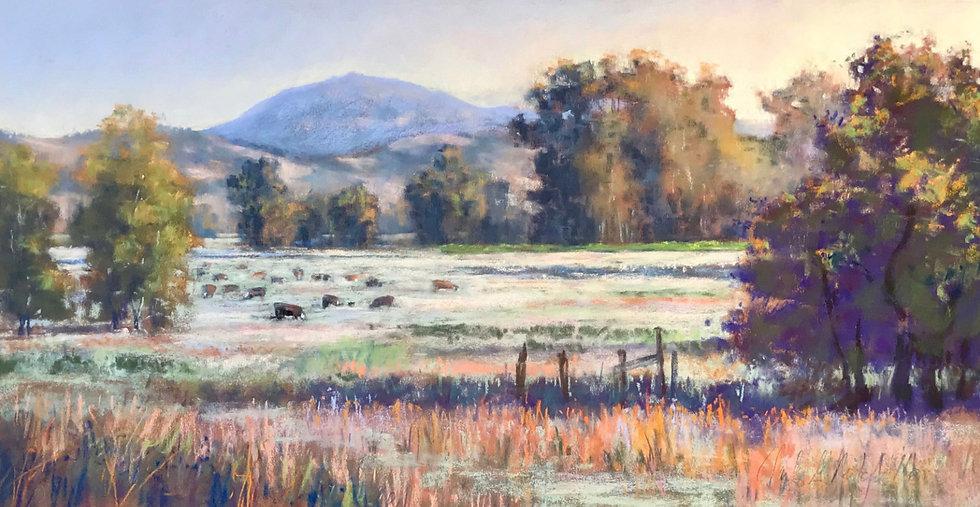 Clark-Mitchell-Colibri-Gallery-6.jpg