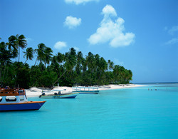 Island Docking