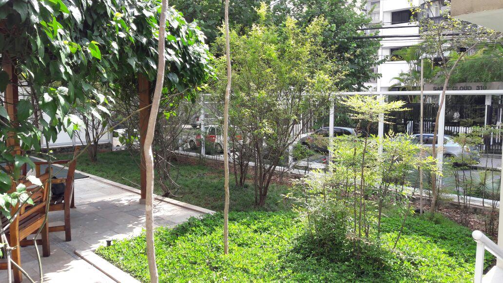 Punica Granatum (Romazeira)