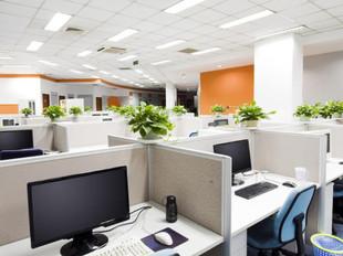Vasos Área de Trabalho