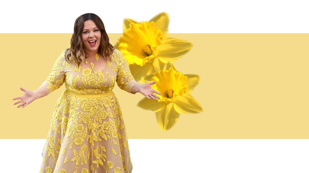 Melissa McCarthy wearing her own clothing line Melissa McCarthy Seven7