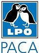 logo-LPO-PACA-221x300.jpg