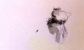 animazione  ursula tavella.jpg