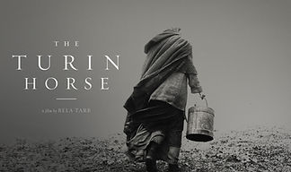 tourin horse.jpg