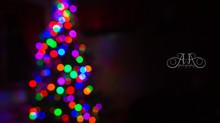 365 Project: December 8 - December 14