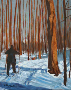Cross-country skiing in the woods of Ile-Bizard