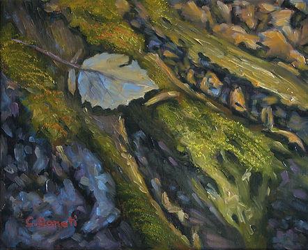 Luminous Moss by Caroline Donati Fine Ar