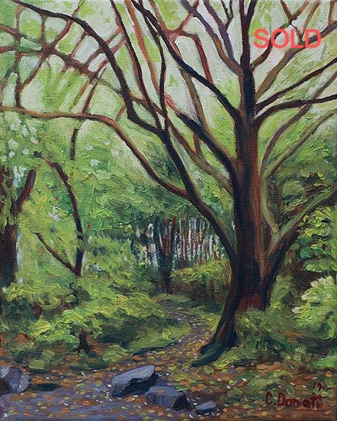 Mount Royal Foliage