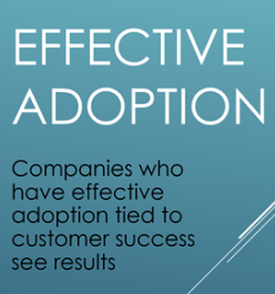 Will the chief adoption officer become a thing?