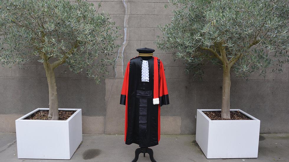 Openbaar ministerie toga ceremonie
