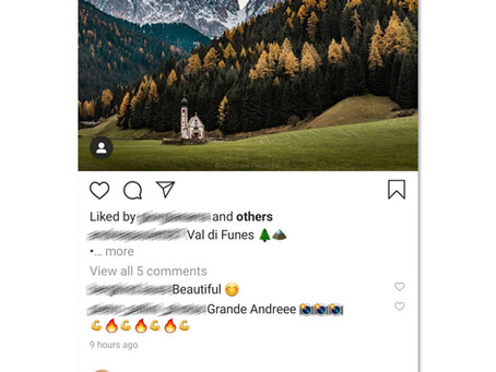 How to Use : SnapDown Downloader for Instagram & Twitter