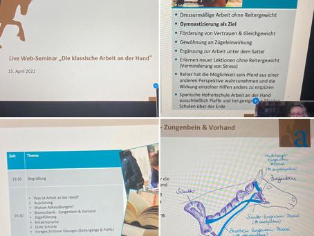 Klassische Arbeit an der Hand im Online-Seminar