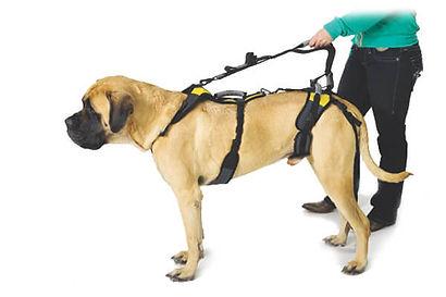 help-em-up harness image.jpg