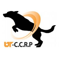 ccrp image.jpg