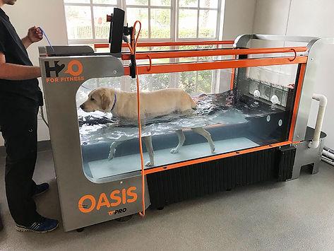 Oasis pic 1.jpg