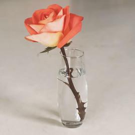 Clear Bud Vase - $2