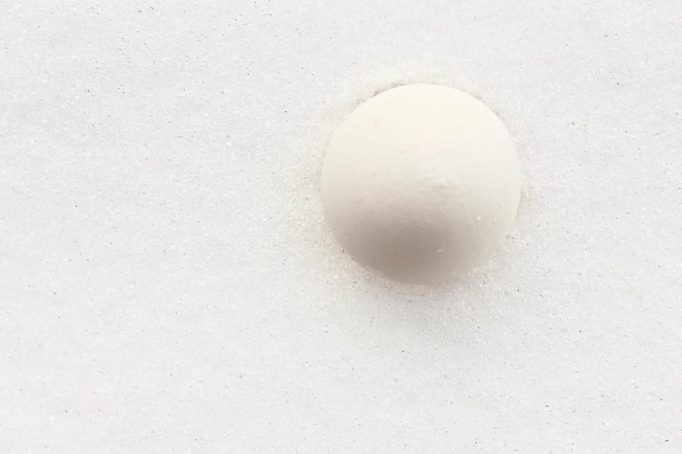 egg in snowmood