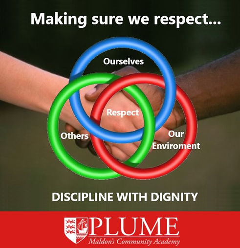 discipline and dignity poster.jpg