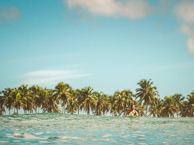 | solitário surfista |