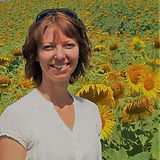 Sunflowers Italy.jpg
