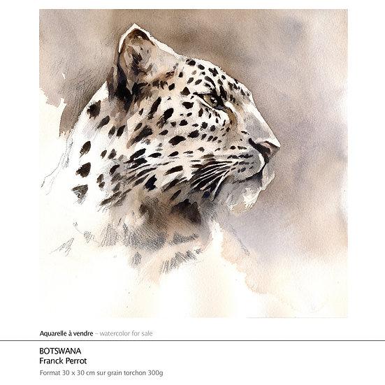 "Aquarelle ""Botswana"""