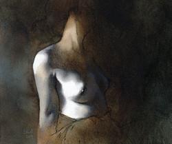NU 2011 n°154