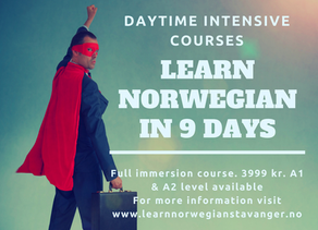 DAYTIME INTENSIVE NORWEGIAN COURSES