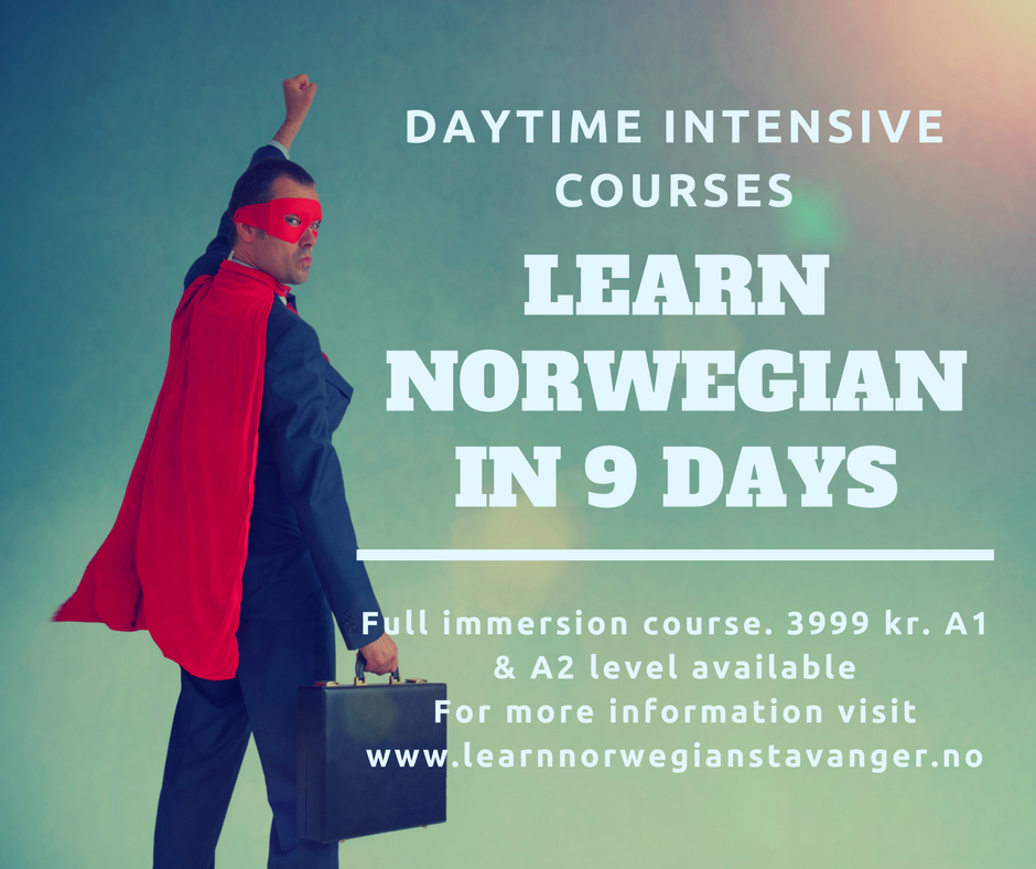 Daytime Intensive Course | Learn Norwegiain Only In 9 Days