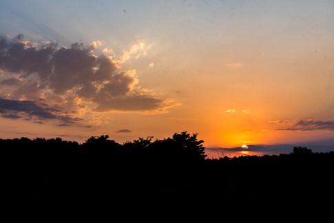 wet sunrise