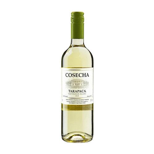 Tarapacá Cosecha Sauvignon Blanc - 750ml